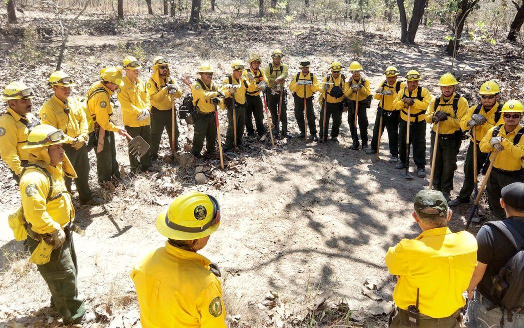La CONAFOR exhorta a la población a no combatir incendios forestales si no está capacitada