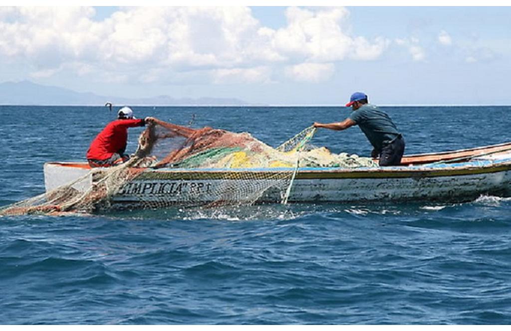40% de los pescadores no cumplen con permisos de pesca comercial: CONAPESCA